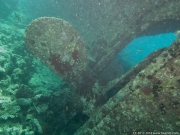17 Shag Rock (Kingston)-IMG_0624